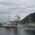 Looking small among the fishing boats